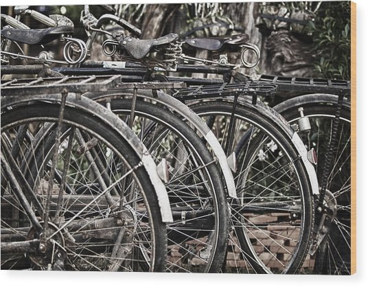 Antique Bicycles Wood Print by Thomas  von Aesch