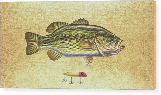 Antique Lure And Bass Wood Print