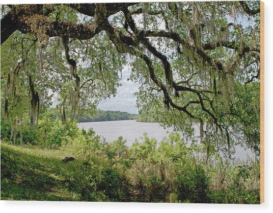 Apalachicola River Wood Print