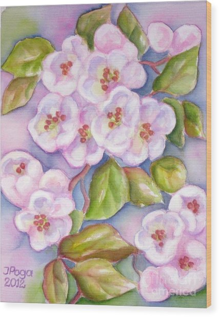 Apple Blossoms 2 Wood Print