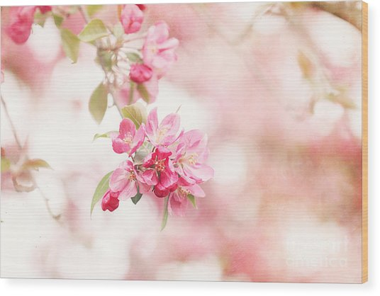 Apple Tree In Spring Wood Print