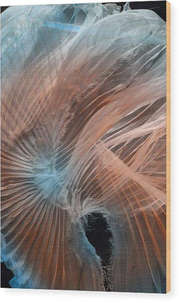 Aqua Amber Texture Wood Print