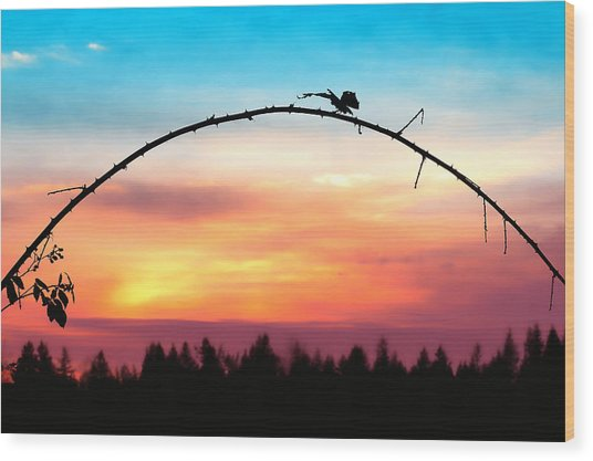 Arch Silhouette Framing Sunset Wood Print