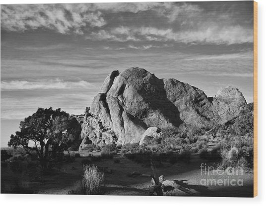 Arches Black And White Wood Print by Wilma  Birdwell