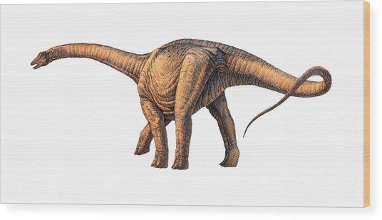 Argentinosaurus Dinosaur Wood Print by Joe Tucciarone