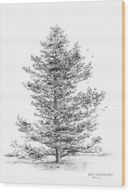 Arkansas - Loblolly Pine Wood Print