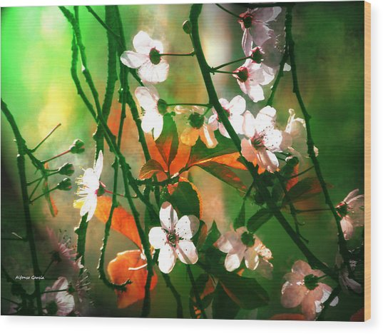 Armonia En La Naturaleza Wood Print