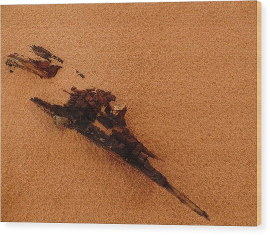 Art In The Sand Wood Print