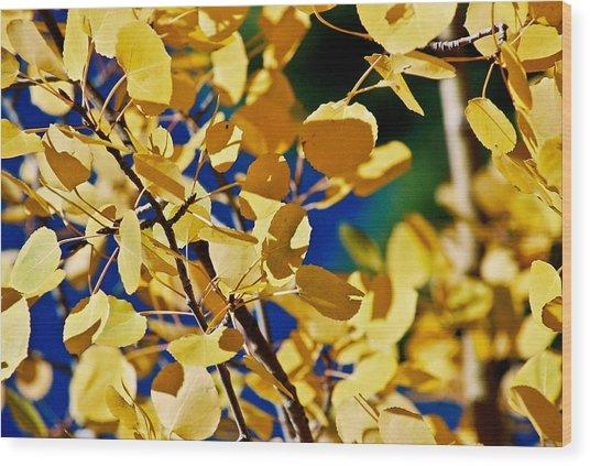 Aspen Gold Medallions Wood Print