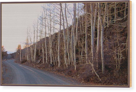 Aspen Lane Wood Print