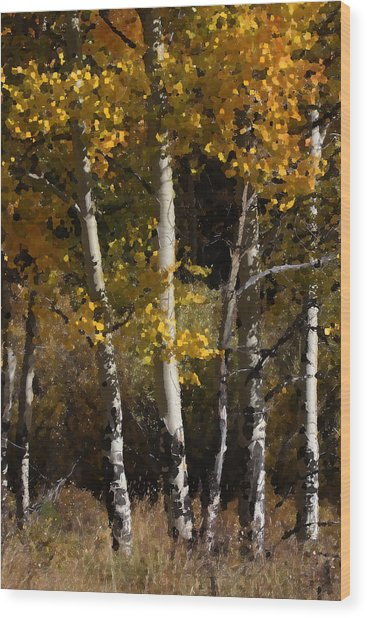 Aspen Palate Knife Wood Print by Judy Deist