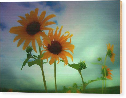 Asphalt Lemonade Wood Print