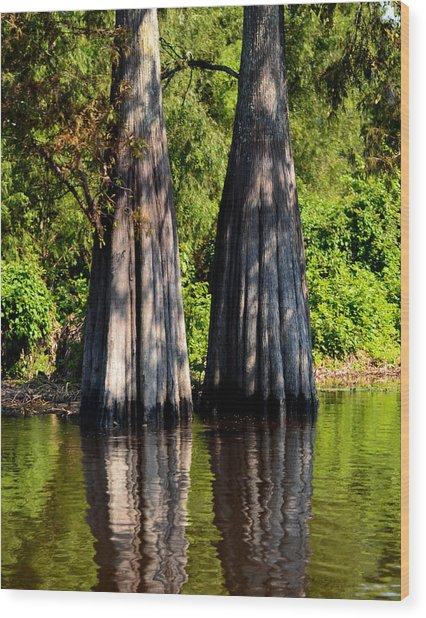 Atchafalaya Basin 53 Wood Print