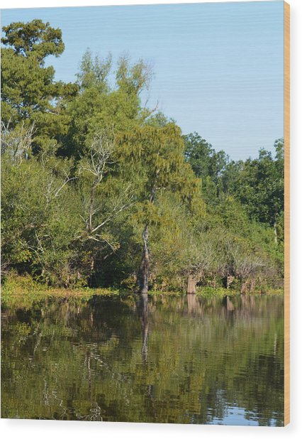Atchafalaya Basin 7 Wood Print