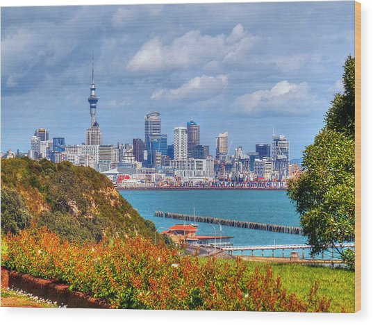 Auckland Wood Print by Lynette McNees