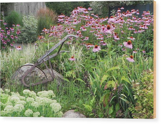 Aunt Christy's Garden Wood Print by Jennifer Compton