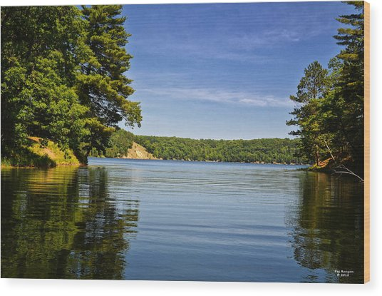 Ausable River In June Wood Print