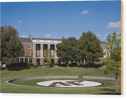 Wood Print featuring the photograph Austin Peay State University by Ed Gleichman
