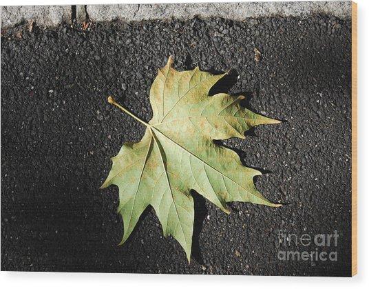 Autumn 10 Wood Print by Elena Mussi