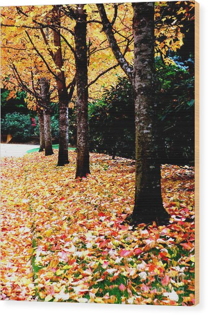 Autumn Alley  5 Wood Print