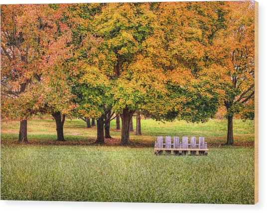 Autumn And A Bench Wood Print