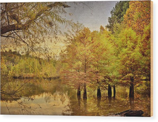 Autumn At The Creek Wood Print