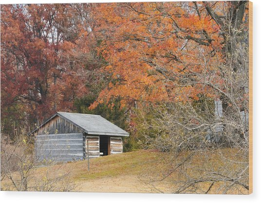 Autumn Behind The Homestead Wood Print