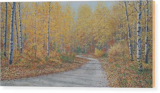 Autumn Birches Wood Print by Jake Vandenbrink