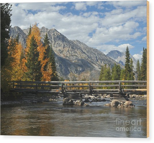 Autumn Bridges Grand Teton National Park Wood Print