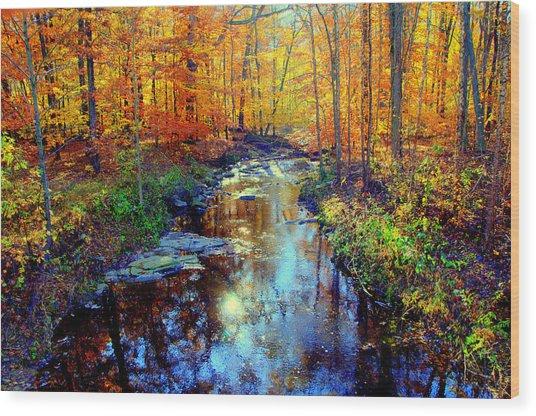 Autumn Colors 10 Wood Print