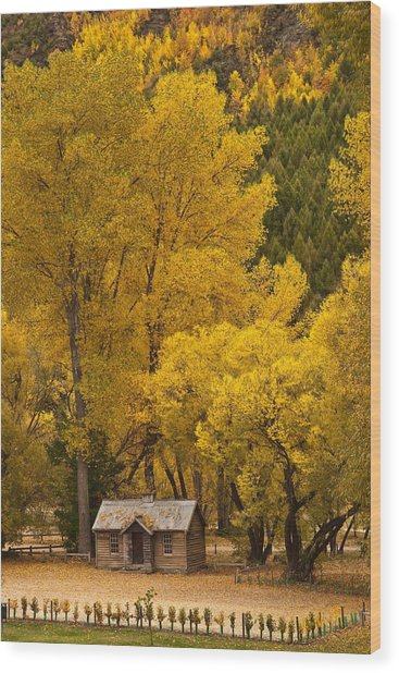Autumn Cottage Wood Print by Graeme Knox