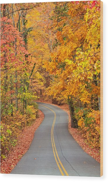Autumn Drive Signal Mountain Wood Print