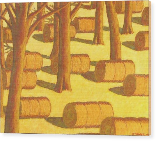 Autumn Haybales Wood Print by John  Turner