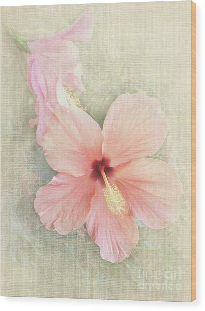 Autumn Hibiscus Wood Print