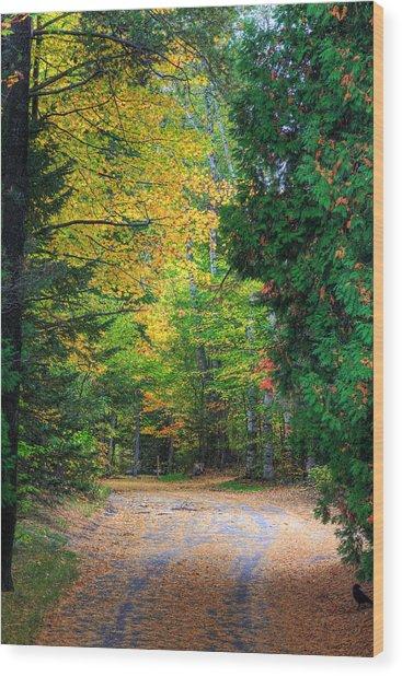 Autumn Wood Print by Kean Poh Chua