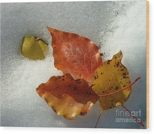 Autumn Leaves In Snow Wood Print