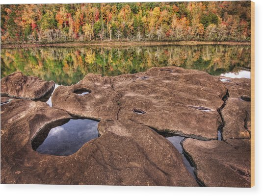Autumn On The Savannah Wood Print