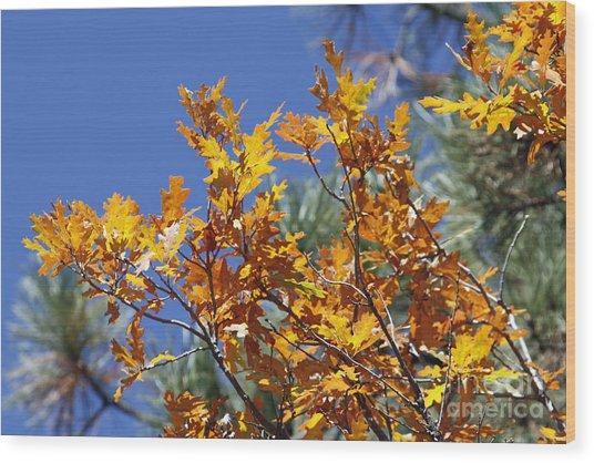 Autumn Orange Wood Print