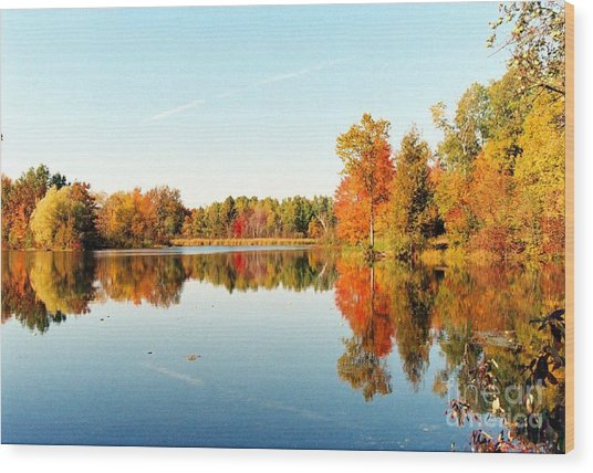 Autumn Splendor Wood Print by Crissy Sherman