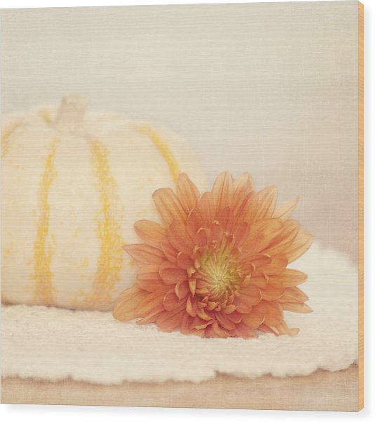 Wood Print featuring the photograph Autumn Splendor by Kim Hojnacki