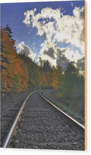Autumn Tracks Wood Print