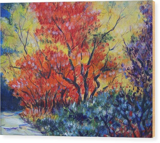 Autumnal Colors Wood Print by Jon Shepodd