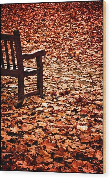 Autumnal Colours Wood Print