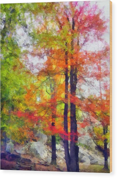Autumnal Rainbow Wood Print