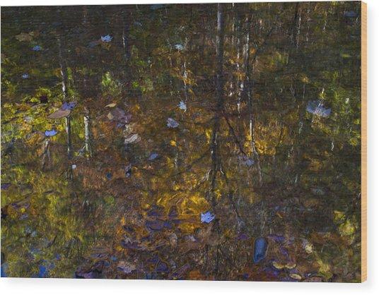 Autumnal Reflection Wood Print by Jim Neumann