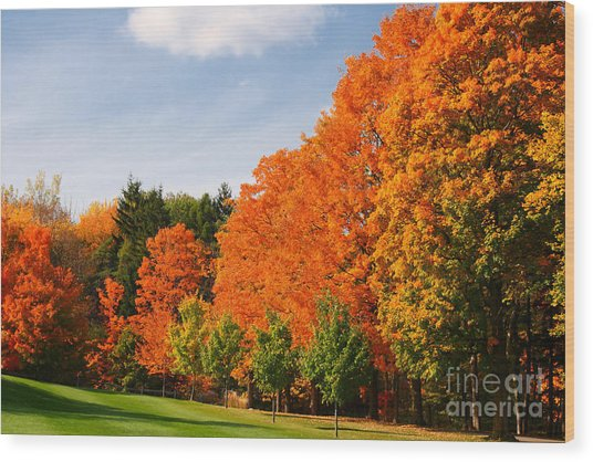 Autumn's Artwork Wood Print
