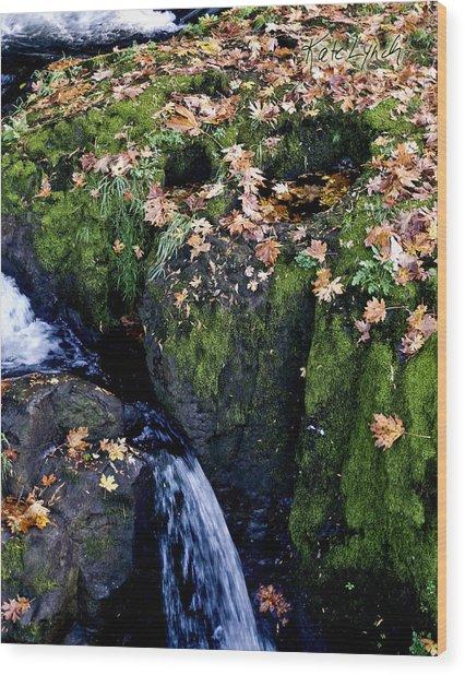 Autumn's End Wood Print