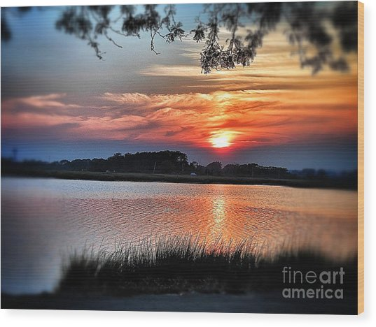 Awesome Sunset Wood Print by Claire Reilly