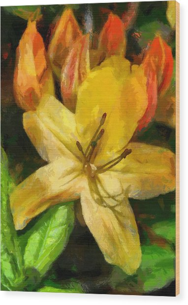 Azalea In Bloom Wood Print