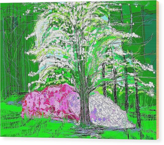 Azaleas And Dogwood Wood Print by Alberto Lacoius-Petruccelli